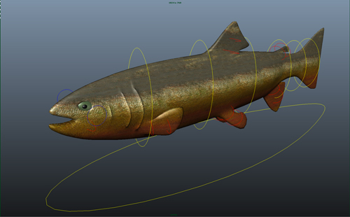 salmon-3d-model-rigged-3