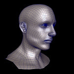 Male-Head-3d-model-8