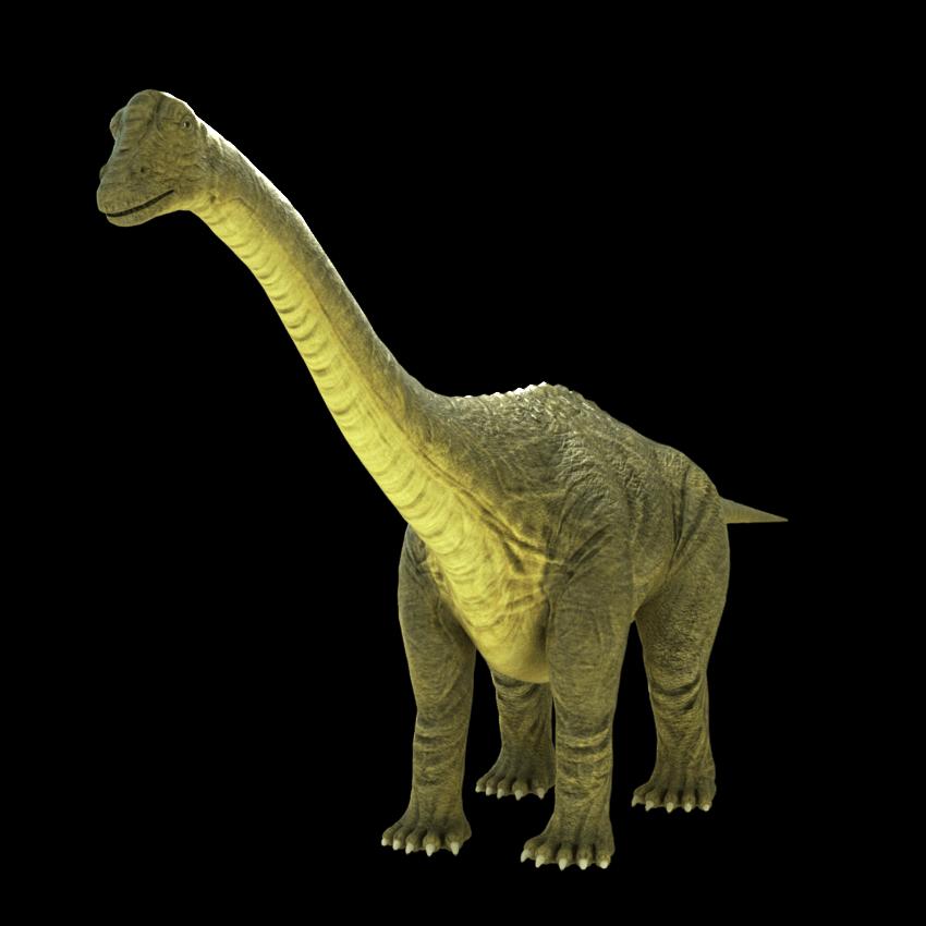 brontosaurus-apatosaurus-3d-model-1