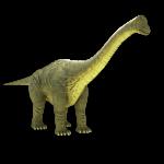 brontosaurus-apatosaurus-3d-model-2