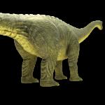 brontosaurus-apatosaurus-3d-model-6