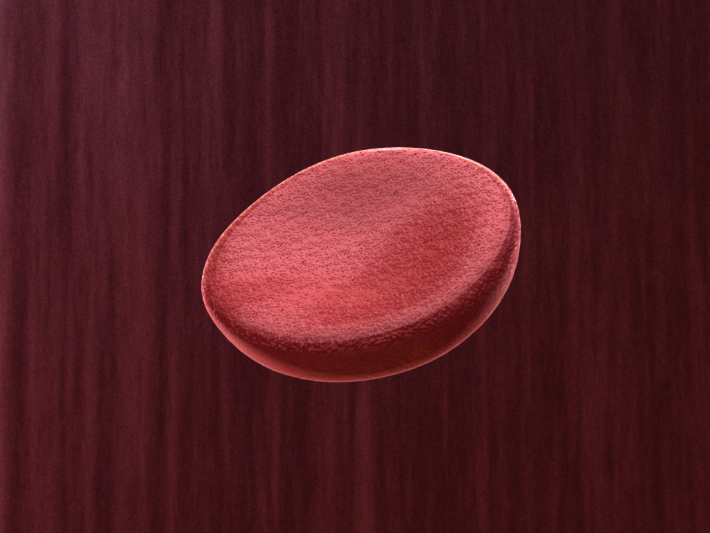 red-blood-cell-3d-model-1