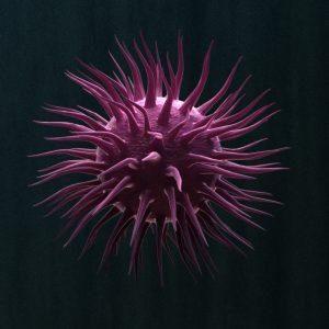 virus-3d-model-cell-10