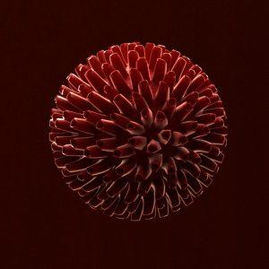 virus-3d-model-cell-16