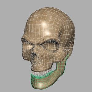 angry-skull-3d-model-13