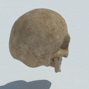 angry-skull-3d-model-3
