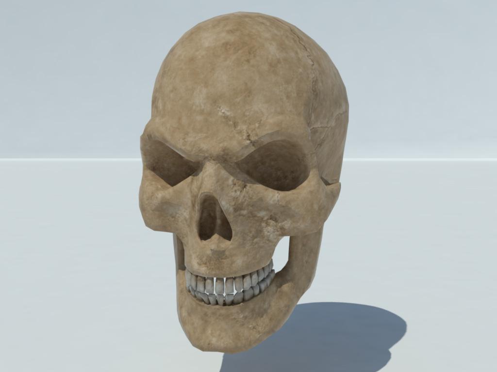 angry-skull-3d-model-5