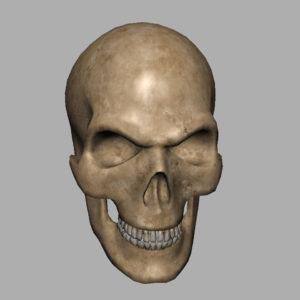 angry-skull-3d-model-6