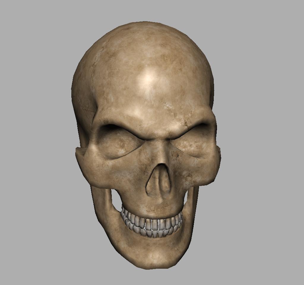 Angry Skull 3D Model