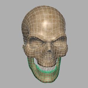 angry-skull-3d-model-7