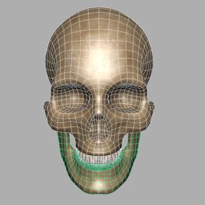 human-skull-3d-model-7