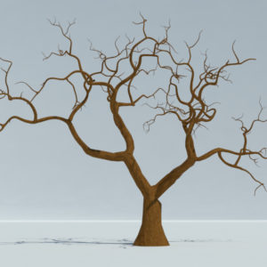 tree-winter-3d-model-5