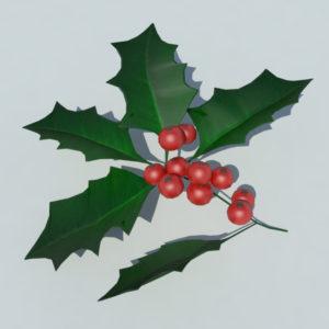 holly-leaves-berries-3d-model-1