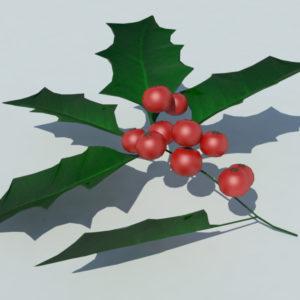 holly-leaves-berries-3d-model-2