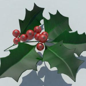 holly-leaves-berries-3d-model-3
