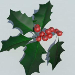 holly-leaves-berries-3d-model-4