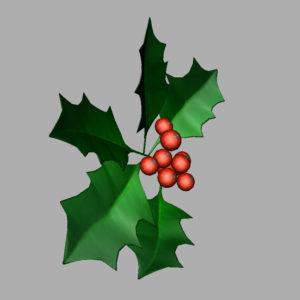 holly-leaves-berries-3d-model-6