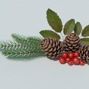 pine-cone-spruce-fir-leaf-3d-model-1