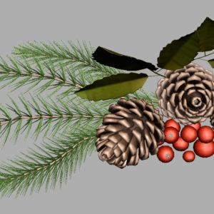 pine-cone-spruce-fir-leaf-3d-model-10