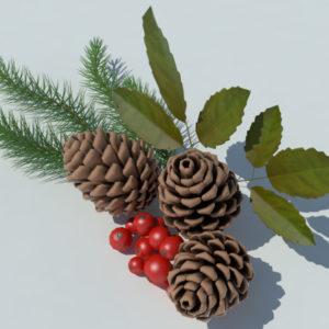 pine-cone-spruce-fir-leaf-3d-model-3
