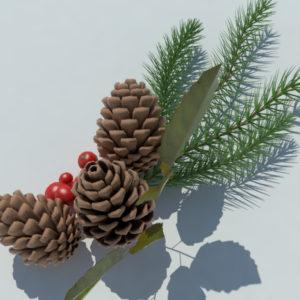pine-cone-spruce-fir-leaf-3d-model-6