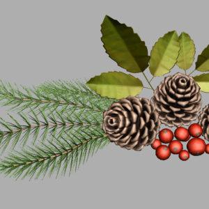 pine-cone-spruce-fir-leaf-3d-model-8
