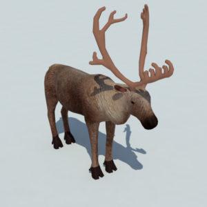 reindeer-3d-model-2