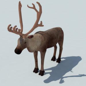 reindeer-3d-model-3