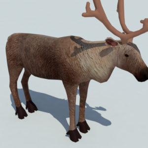 reindeer-3d-model-4