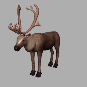 reindeer-3d-model-9