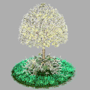 buxus-tree-with-ivy-grass-3d-model-13