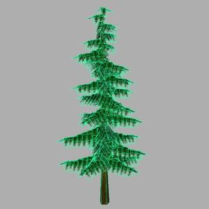 conifer-pine-tree-3d-model-15
