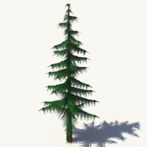 conifer-pine-tree-3d-model-2