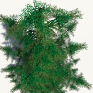 conifer-pine-tree-3d-model-6