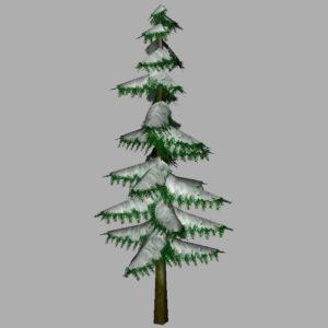 conifer-pine-tree-snow-3d-model-10