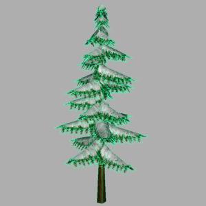 conifer-pine-tree-snow-3d-model-11
