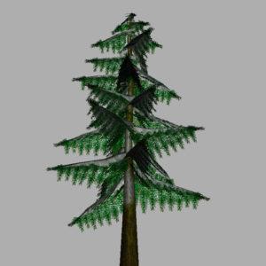 conifer-pine-tree-snow-3d-model-13