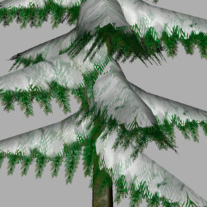 conifer-pine-tree-snow-3d-model-15