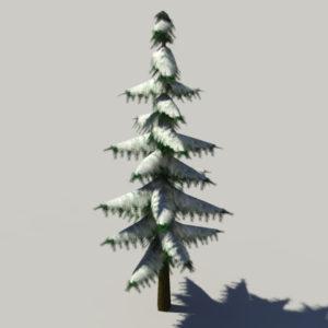conifer-pine-tree-snow-3d-model-2