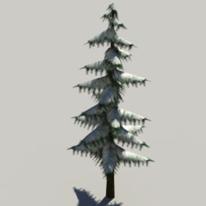 conifer-pine-tree-snow-3d-model-3