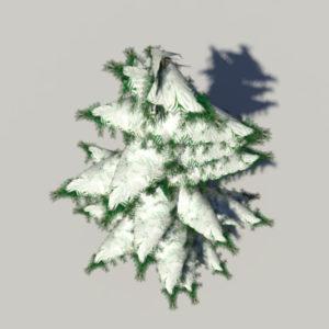 conifer-pine-tree-snow-3d-model-6