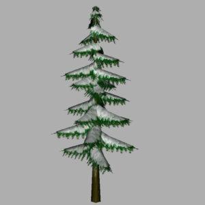 conifer-pine-tree-snow-3d-model-8