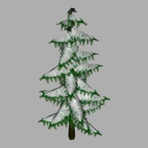 conifer-pine-tree-snow-3d-model-9