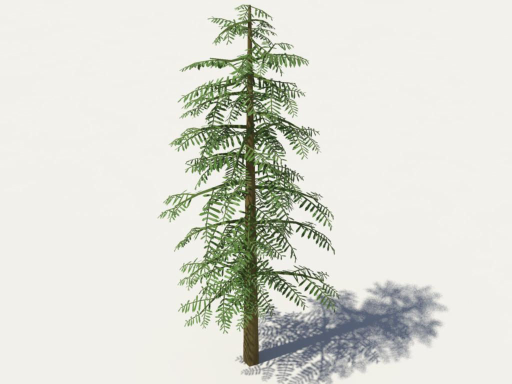 conifer-tree-green-3d-model-2