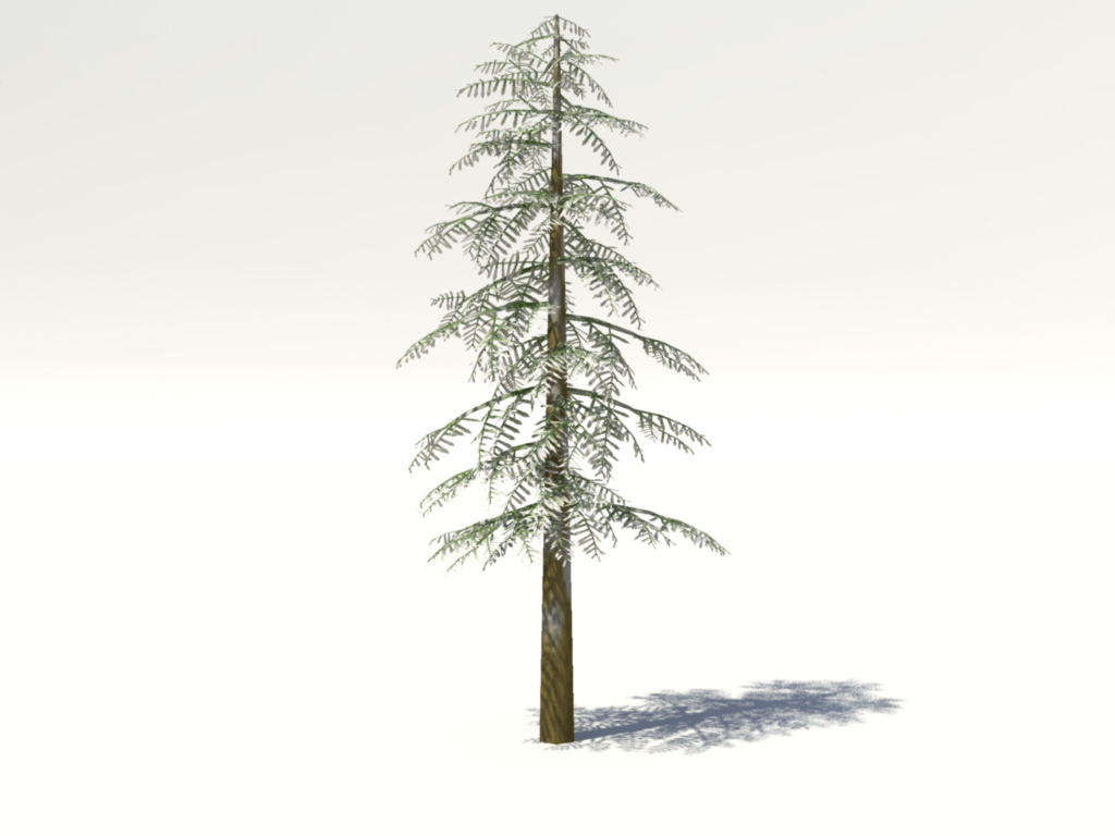 conifer-tree-snow-3d-model-1
