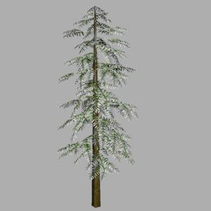 conifer-tree-snow-3d-model-12