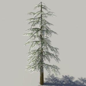 conifer-tree-snow-3d-model-5
