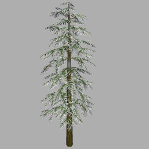 conifer-tree-snow-3d-model-7