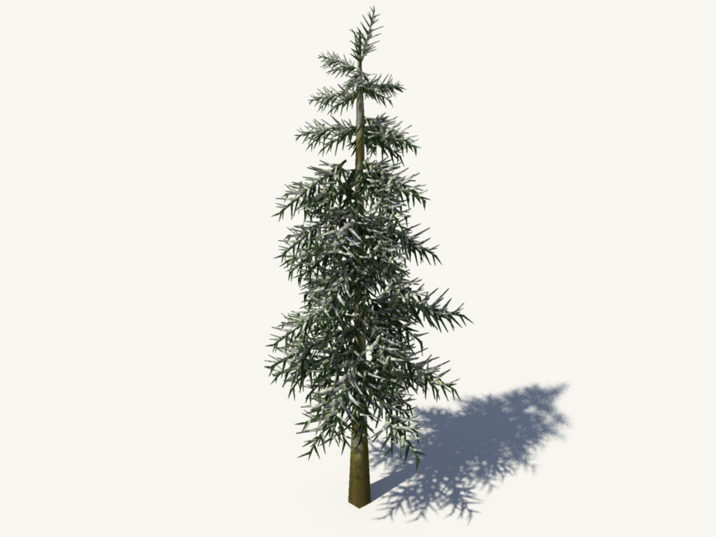 conifer-tree-winter-3d-model-2