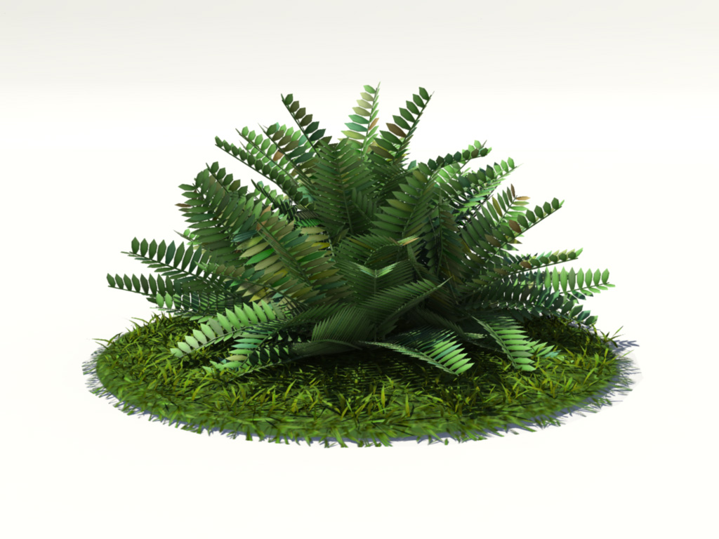 fern-bush-3d-model-shrubs-1